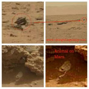 discoveries on Mars