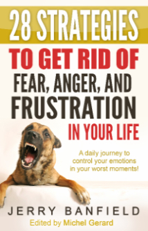 28 Strategies to Get Rid of Fear, Anger and Frustration in Your Life